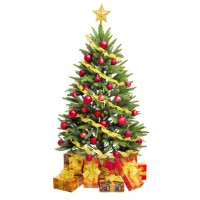 С 8 по 14 декабря 2012 г. дарим скидки - до 35% !!!